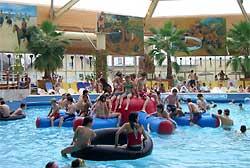 Schwimmbad beach nürnberg palm Palm beach